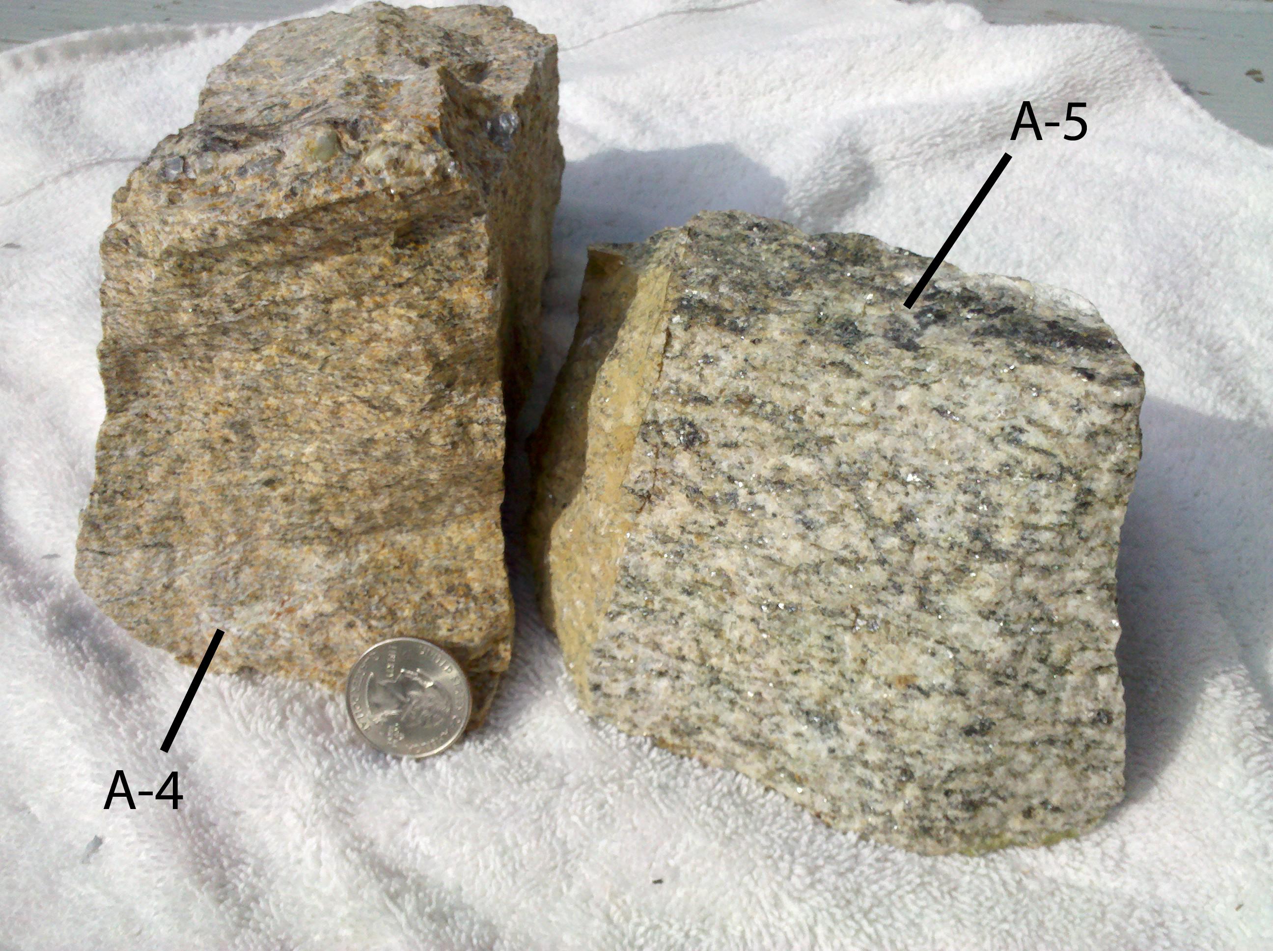 Hand samples of foliated biotite AG